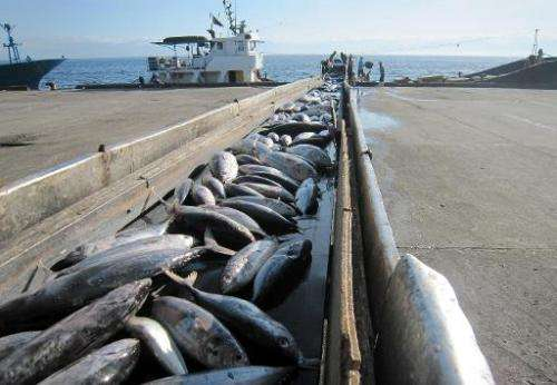 Cutbacks to tuna fishing agreed at a crucial Pacific regional fisheries conference to prevent over-fishing have fallen short of