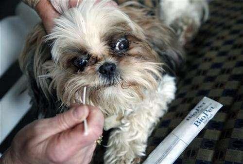 Dog-doo scofflaws get bagged through DNA testing