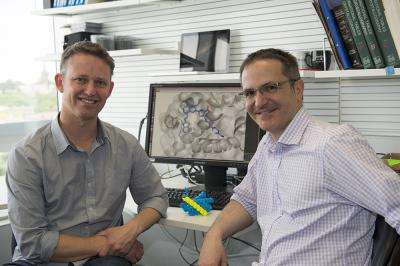 Duo searching for new cancer drugs win 2013 Burnet Prize