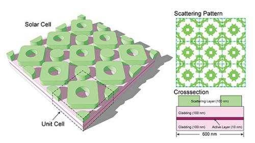 Evolution inspires more efficient solar cell design