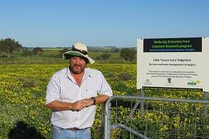 Farm fodder project relies on feedback from 'smart' sheep