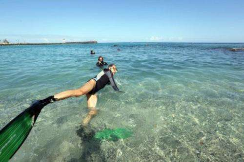 French ecologist, Didier Derand, 55, swims at the site of shark attacks, La Reunion on August 19, 2012
