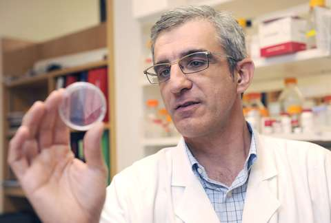 Genetic vulnerability of lung cancer to lay foundation for new drug options