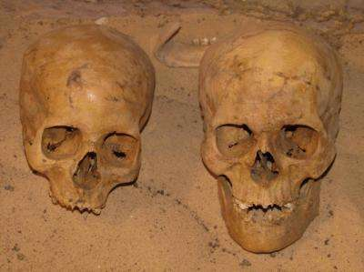 Governors of Ancient Egypt suffered from malnutrition dying before they were 30 years old