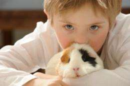 Homeless and abused children benefit from animal assisted therapy