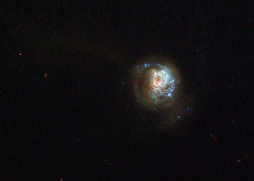 Hubble Sees a Swirl of Star Formation