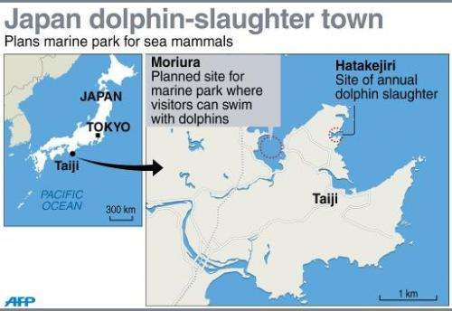 Japan dolphin-slaughter town