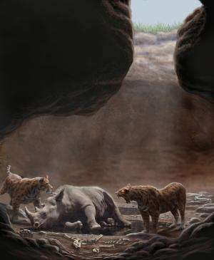 Killer entrance suspected in mystery of unusually large group of carnivores in ancient cave