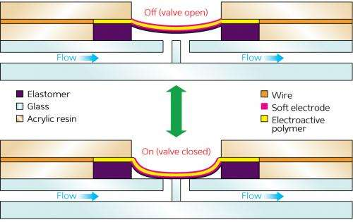 Lab-on-a-chip technology gets a flexible upgrade