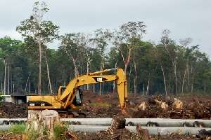 Large soil carbon stores trigger rethink