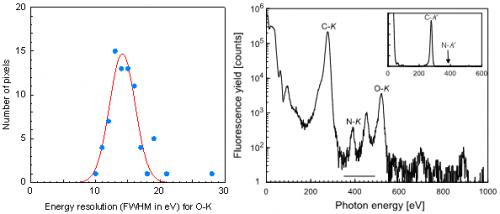 Lattice location determination of trace nitrogen dopants in semiconductor silicon carbide (SiC)
