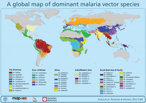 Malaria in the Americas presents a complex picture on hiv in india map, leprosy in india map, malaria regions prone, japanese encephalitis in india map, meningitis map, monsoons in india map, malaria map for bangalore india, malaria maharastra india, typhoid in india map, diphtheria map, air pollution in india map, water in india map, tetanus map, hepatitis in india map, malaria map india gujarat, malaria maharashtra india, rabies in india map, hunger in india map, malaria countries prone, poverty in india map,