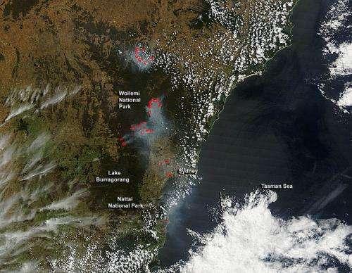 Many bushfires in New South Wales, Australia