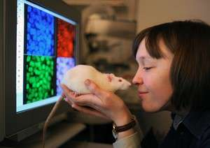 Epigenetics: Neurons remember because they move genes in space
