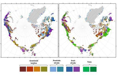New models predict drastically greener Arctic in coming decades