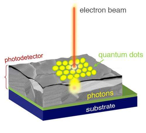 New quantum dot technique combines best of optical and electron microscopy