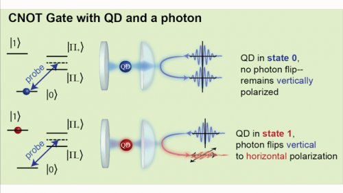 Quantum dot commands light: A solid state ultrafast logic gate on a photon