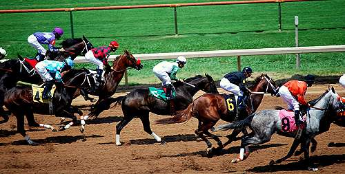 Racing start for two-year-old thoroughbreds not detrimental