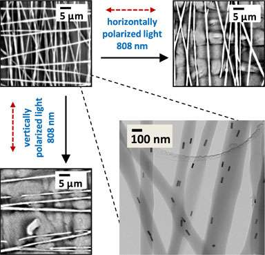 Researchers 'nanoweld' by applying light to aligned nanorods in solid materials