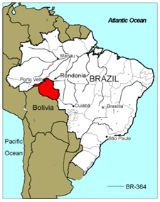 Researcher undertakes largest-ever survey of Brazil's stingless bees
