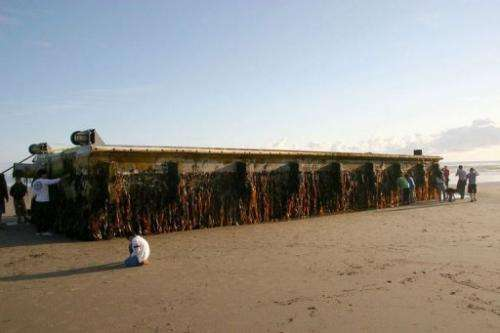 Residents of Agate Beach, Oregon look at a huge floating dock from Japan that washed ashore, June 5, 2012