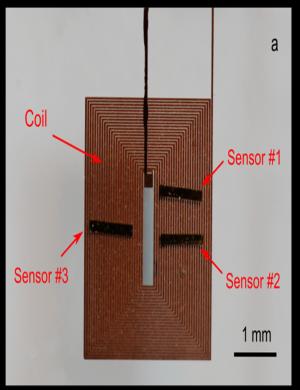 Salmonella sensing system