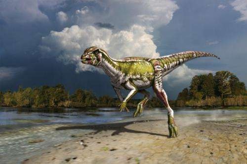 Small, speedy plant-eater extends knowledge of dinosaur ecosystems