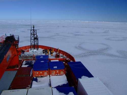 Southern Ocean sampling reveals travels of marine microbes
