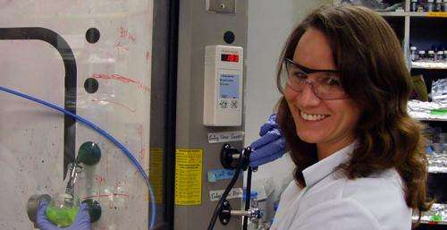 Spectroscopy sheds new light on mysteries of spider silk