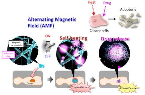 Success in inducing natural death of epithelial cancer cells by simultaneously realizing thermotherapy and chemotherapy