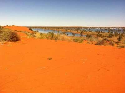 Threats loom for Australia's outback biodiversity