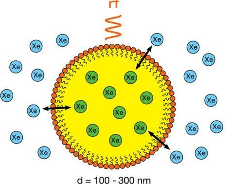 Tiny bubbles hold big promise for NMR/MRI