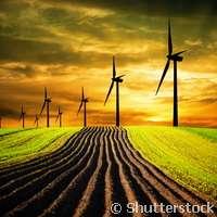 Convertir los desechos de la agricultura y la acuicultura en energía renovable