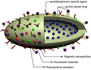 Unique nano carrier targets drug delivery to cancer cells