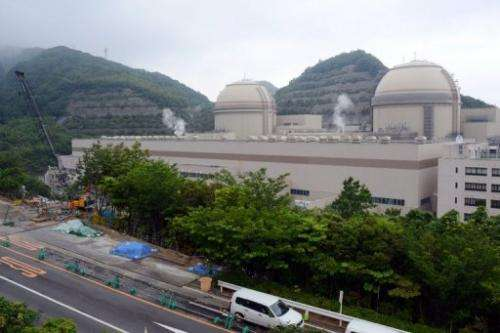 Units 3 and 4 of the Oi nulcear power plant in Japan, pictured on June 15, 2013