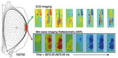 Using airport screening technology to visualize waves in fusion plasma