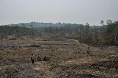 Villagers walking through recently cleared forest purportedly inside a HAGL rubber plantation in Cambodia this year