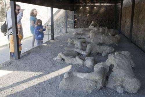 Visitors look at the Orto dei fuggiaschi (Garden of the Fugitives) in Pompeii, Italy, on November 9, 2012
