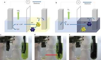 Water splitting: Plants provide blueprint for cheap hydrogen production