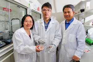 Aerogel technology holds potential for oil and chemical clean-up
