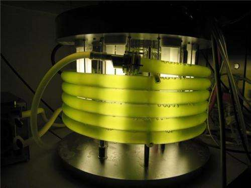 Algae may be a potential source of biofuels and biochemicals even in cool climate