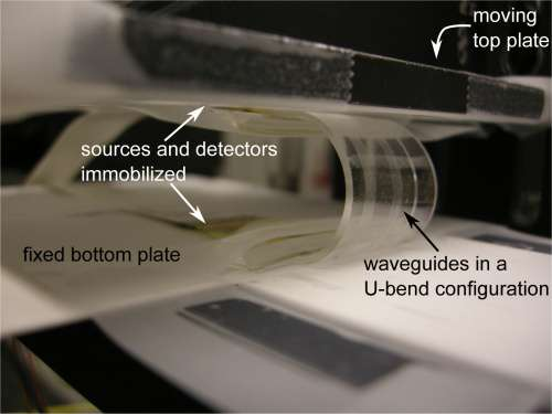 A stretchable highway for light: Researchers build the first circuit with stretchable optical interconnections