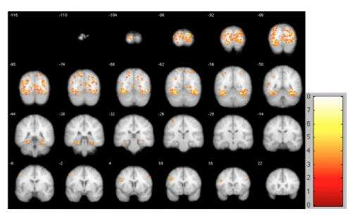 Behavioral economist studies science of decision-making