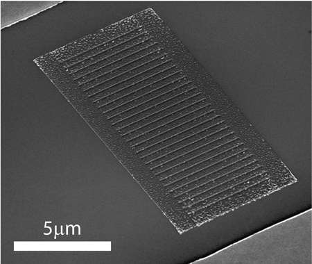 Biomimetic photodetector 'sees' in color