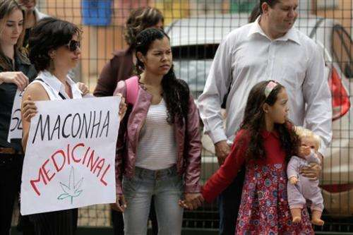 Brazil to study legalization of medical marijuana