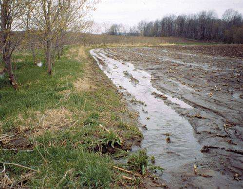 Breaking down differences in modeling soil water substantially shifts carbon stored in land