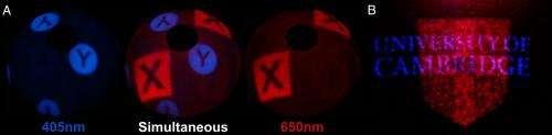 color holograms 2