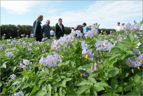 Crop protection 2.0: reducing environmental impact in the EU Is it feasible?