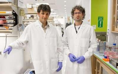 ExRNA: Decoding messages between cells