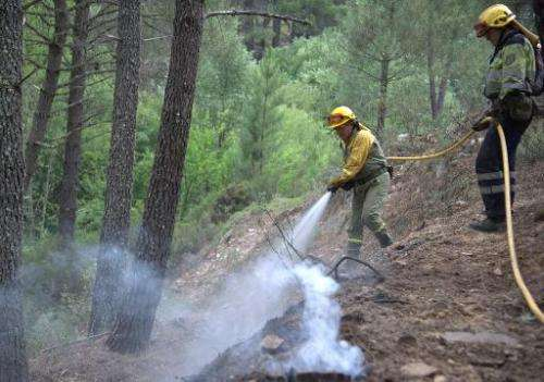 Firefighters work to extinguish a wildfire in Guadalajara, near Veguilla city, on July 19, 2014